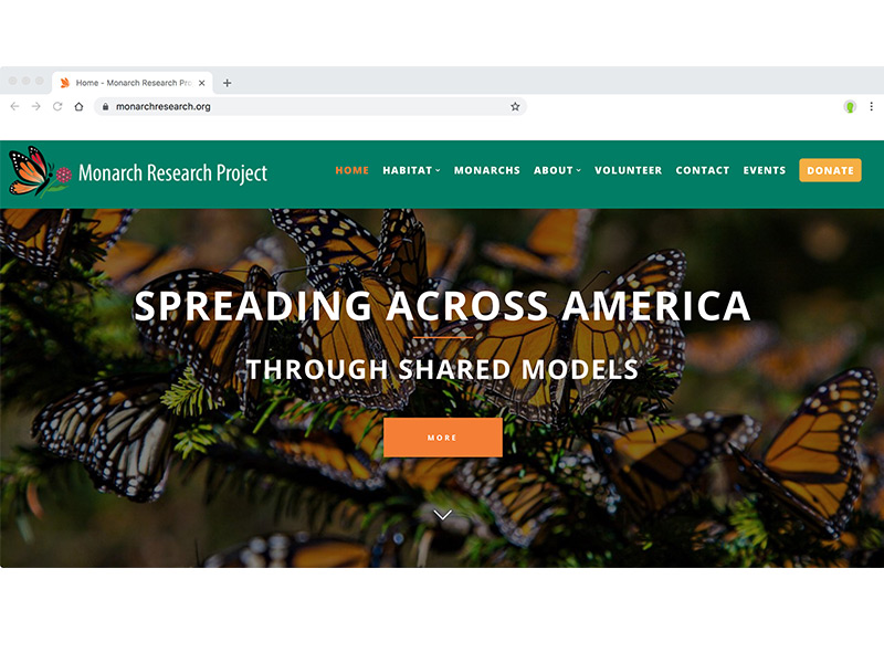 Monarch Research Project website redesign